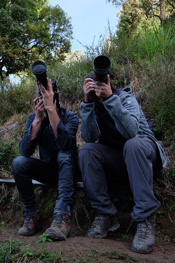 Photographing quetzals